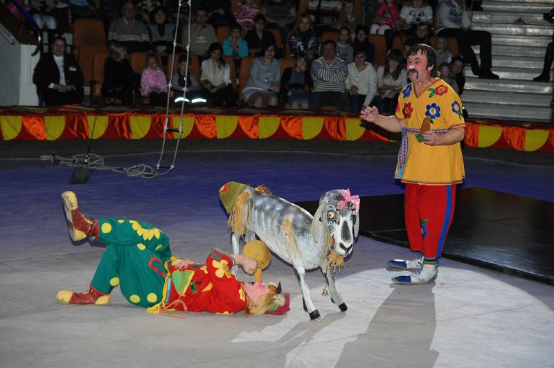 Парные акробаты-коверные на арене екатеринбургского цирка