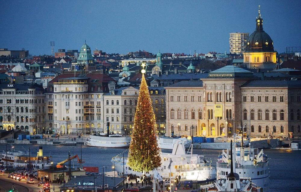 Рождественская ель в Стокгольме