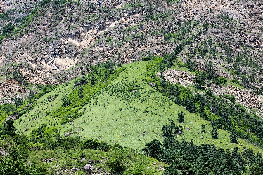 Легкие наполняются свежим горным воздухом, все тянется вверх, кажется, что сейчас взлетишь. Такие ощущения могут быть только в горах. Может, поэтому на Кавказе такие эмоциональные люди?