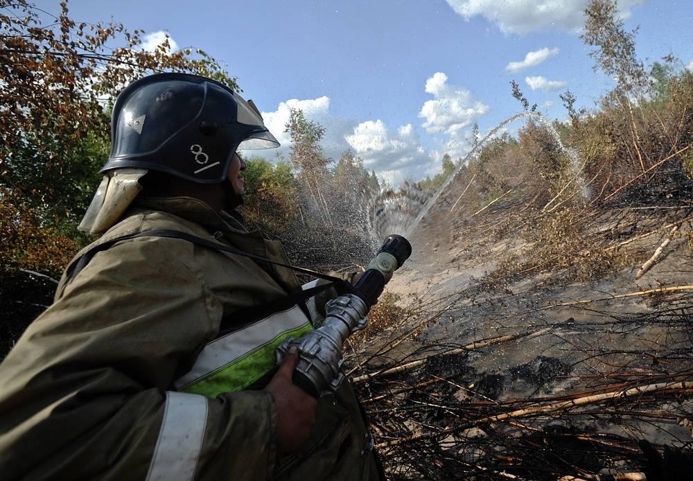 В 2011 году в Центральной России по сравнению с 2010 годом было зафиксировано значительное снижение числа (в 4,64 раза) и площади (более чем в 66,6 раза) лесных пожаров