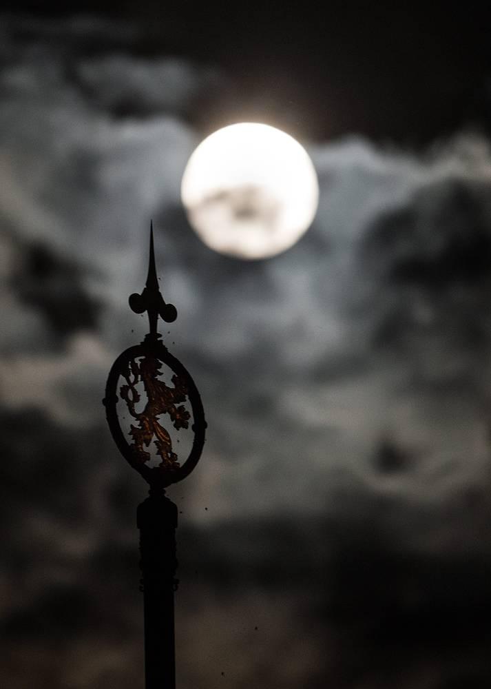 Чешский национальный символ - лев - на фоне луны в Праге