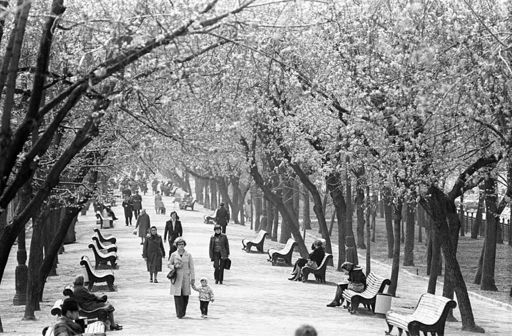 Гоголевский бульвар, 1978 год