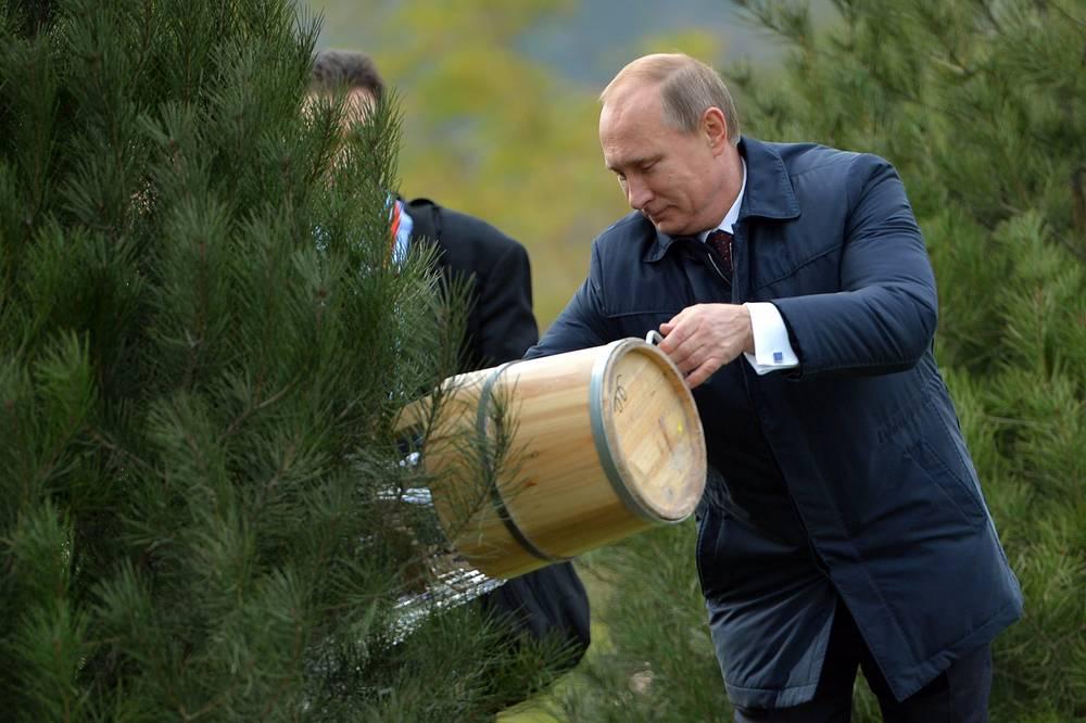 Владимир Путин на лужайке летнего сада конгресс-центра. По замыслу организаторов, новая аллея будет напоминать гостям о состоявшемся в год 25-летия АТЭС Пекинском саммите