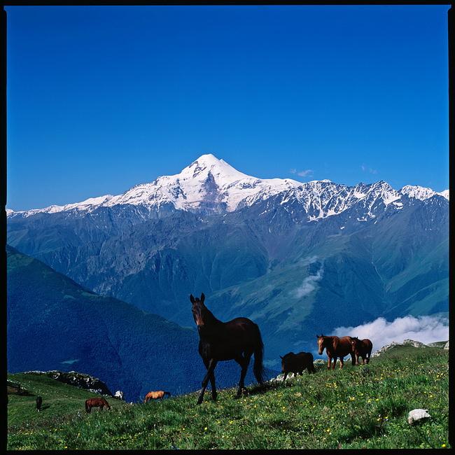 Ингушетия. Вид на Казбек со Столовой горы.