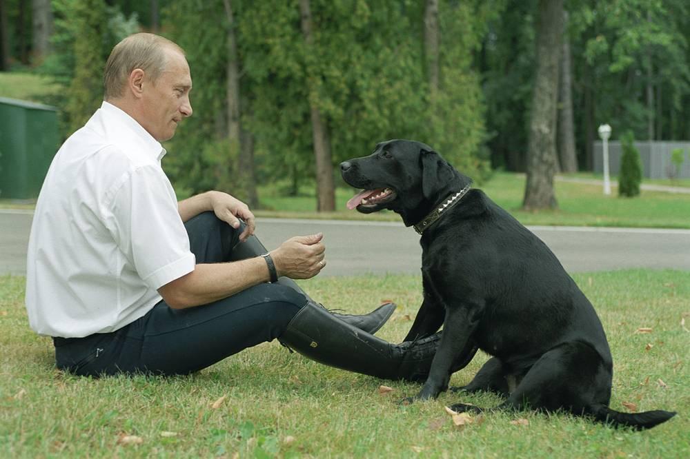 Президент России Владимир Путин с лабрадором Кони, 2003 год