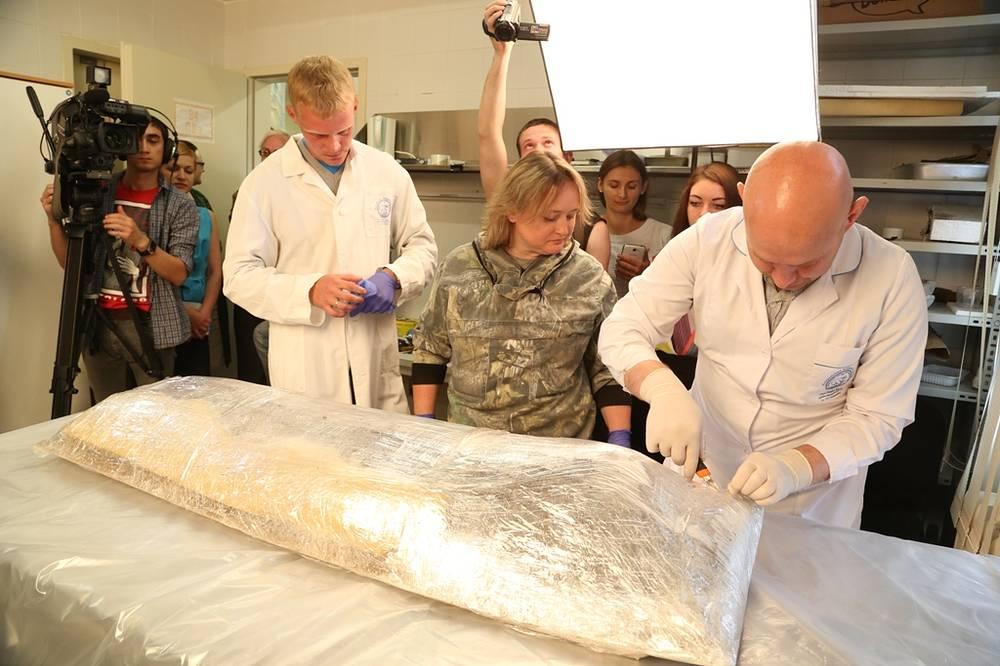 Группа ученых во время вскрытия берестяного кокона, найденного на Ямале