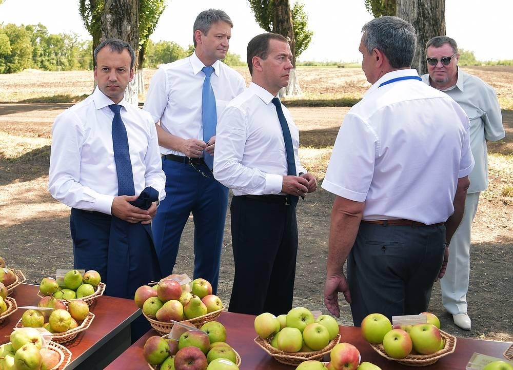 Вице-премьер РФ Аркадий Дворкочич, министр сельского хозяйства РФ Александр Ткачев и премьер-министр РФ Дмитрий Медведев