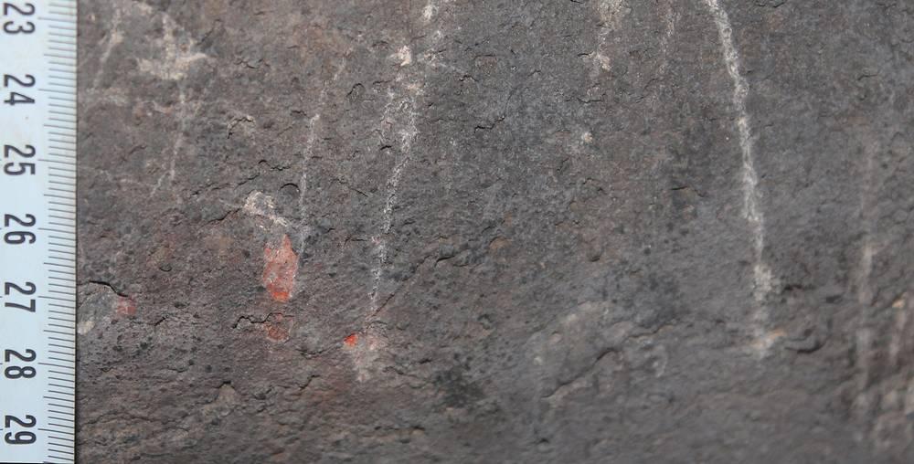 Новые фрагменты палеолитических рисунков