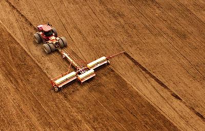 Кто успел, тот и взял: кому достались льготные сельхозкредиты