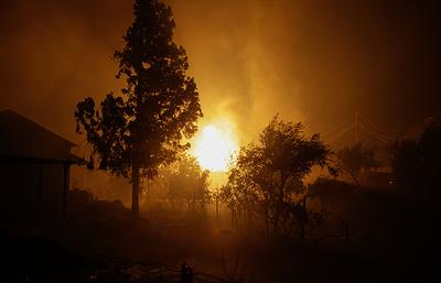 Крупнейшие лесные пожары в мире по числу человеческих жертв. Досье