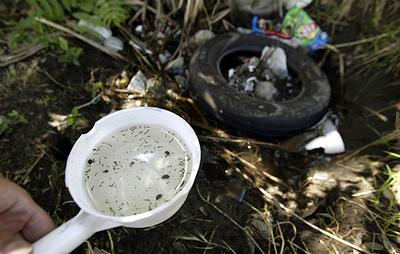 Комары переносят частицы микропластика из воды на сушу