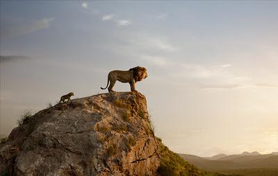 """Нового """"Короля Льва"""" назвали самым кассовым мультфильмом. В Disney с этим не согласны"""