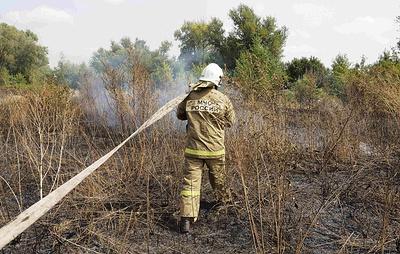 В Югре действуют четыре лесных пожара на площади 72 га