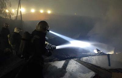Более 321 га лесов уничтожено пожарами за сутки в Воронежской области