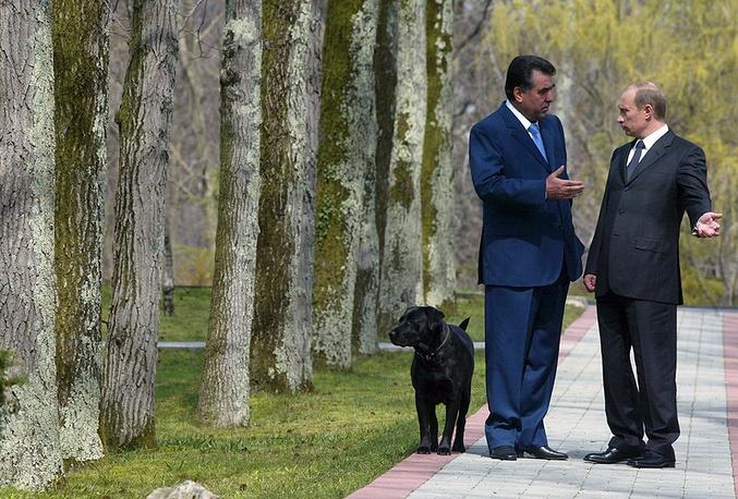 Владимир Путин и президент Таджикистана Эмомали Рахмонов во время встречи Сочи.Рядом с ними идет собака  Владимира  Путина по кличке Кони. 06 апреля 2005 г.