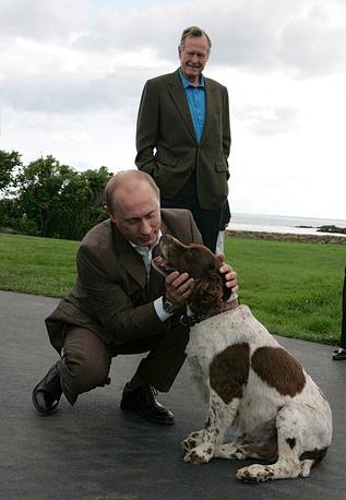 Президент России Владимир Путин гладит собаку президента США Джордж Буша-старший. Дом отдыха семьи Буш на Пойнт Уокера  в штате Мэн. США, 02 июля 2007 г.