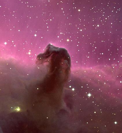 Туманность Конская Голова в созвездии Ориона - непрозрачное пылевое облако на фоне красного свечения. В основании туманности видны формирующиеся звезды