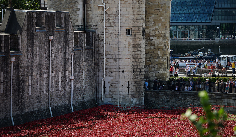 Цветы раздают людям в обмен на 1 фунт или любое другое вознаграждение, а вырученные деньги идут в фонд помощи ветеранам войн