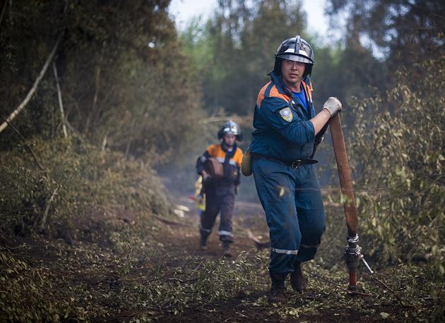 Спасатели продолжают бороться с лесным возгоранием неподалеку от поселка Старое Мелково Конаковского района. За три дня огонь охватил площадь 100 га