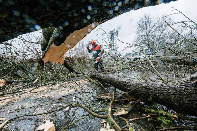 """31 марта на многие регионы Германии, Австрии и Швейцарии обрушился ураган """"Никлас"""". Жертвами стихии стали не менее 11 человек, несколько получили ранения. """"Никлас"""" стал одним из сильнейших штормов, произошедших в ФРГ за последние 30 лет"""