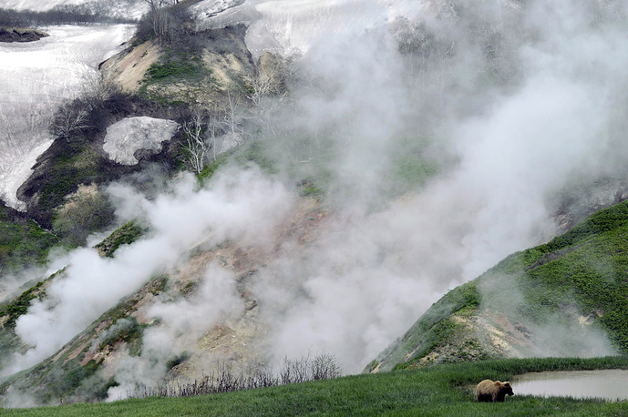 Долина гейзеров в Кроноцком заповеднике. Один из старейших заповедников России расположен в восточной части полуострова Камчатка. Помимо знаменитой долины гейзеров здесь расположены восемь действующих вулканов, термальные озера и водопады