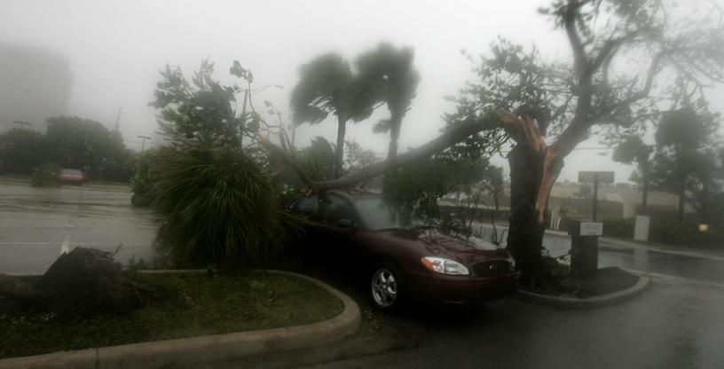 В тот же день стало известно о гибели двух человек, которые оказались заперты в автомобиле из-за падения деревьев
