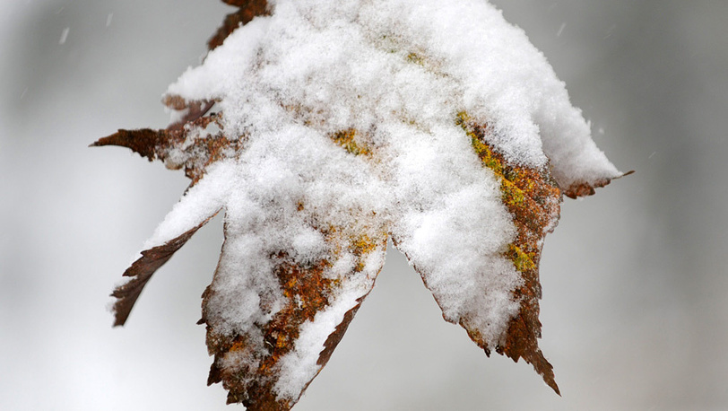 Снегопад в Германии
