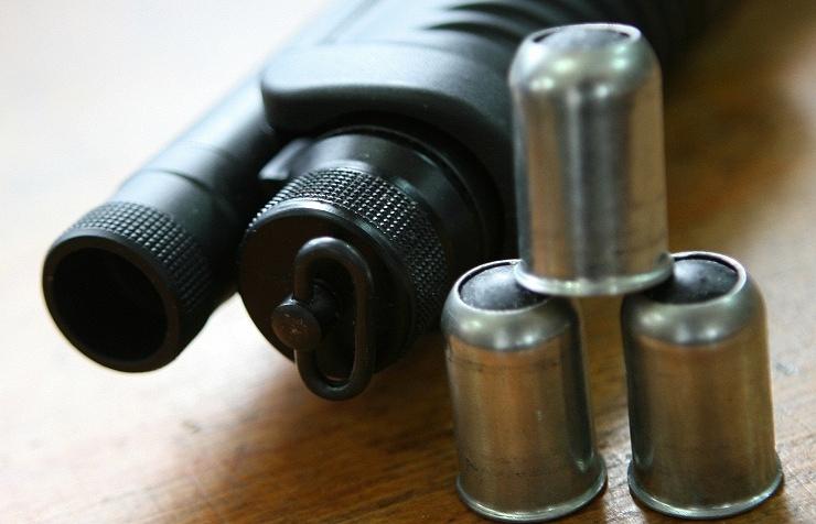 В штате Пенсильвания полицейский случайно застрелил 12-летнюю девочку