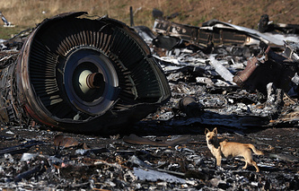 "Обломки пассажирского самолета ""Малайзийских авиалиний"" Boeing 777"