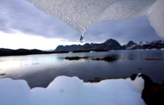 ДВФУ и Мельбурнский университет создали совместный центр изучения Арктики и Антарктики