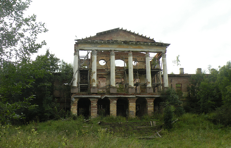 Дворец в Ропше . 2012 год