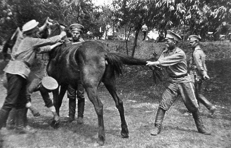 Оренбургские казаки подковывают коня, 1914 год
