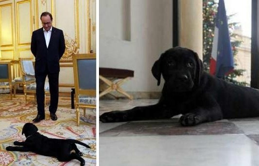 Франсуа Олланд и Филе