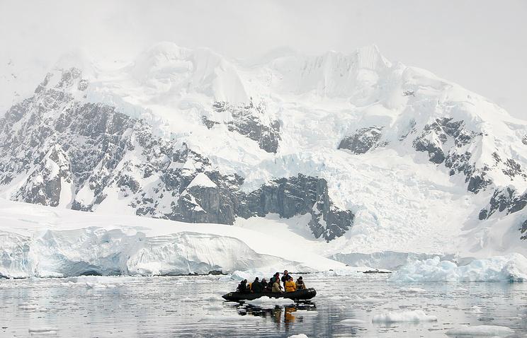 Водоросли вгорах Антарктиды предвещают Земле водный апокалипсис— Ученые
