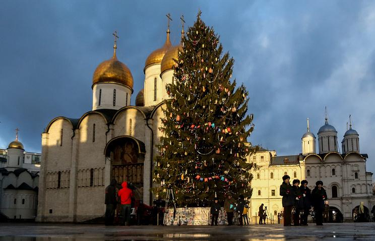 Новогодняя ель для Кремля будет доставлена изИстринского района