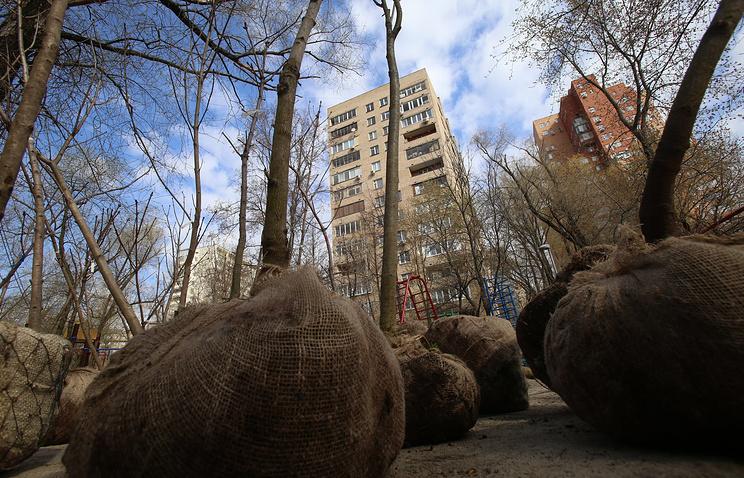Акция «Миллион деревьев» стартовала содвора дома насевере столицы