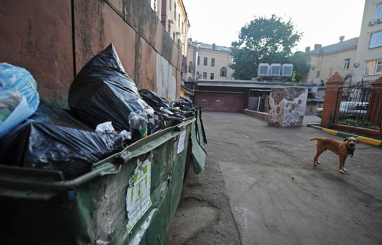 «Генеральная уборка» ОНФ убрала вБрянской области неменее 60 неправомерных свалок