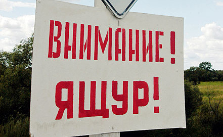 Фото ИТАР-ТАСС/ Владимир Саяпин