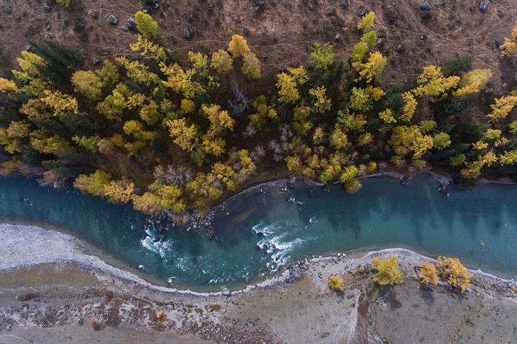 Река Бия в Онгудайском районе